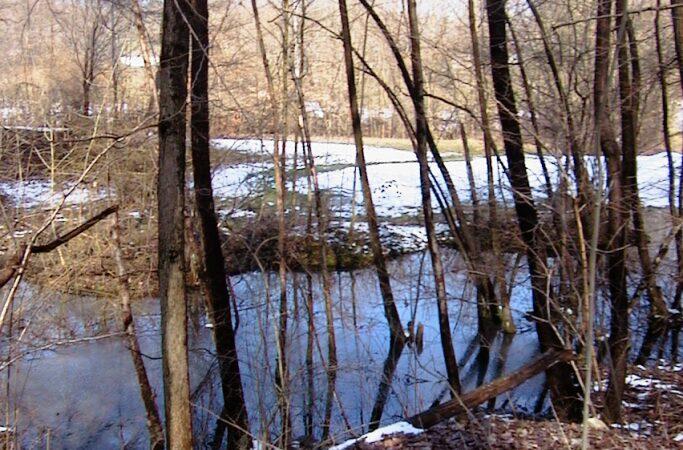 La neve quaresimale del 28 febbraio 2001